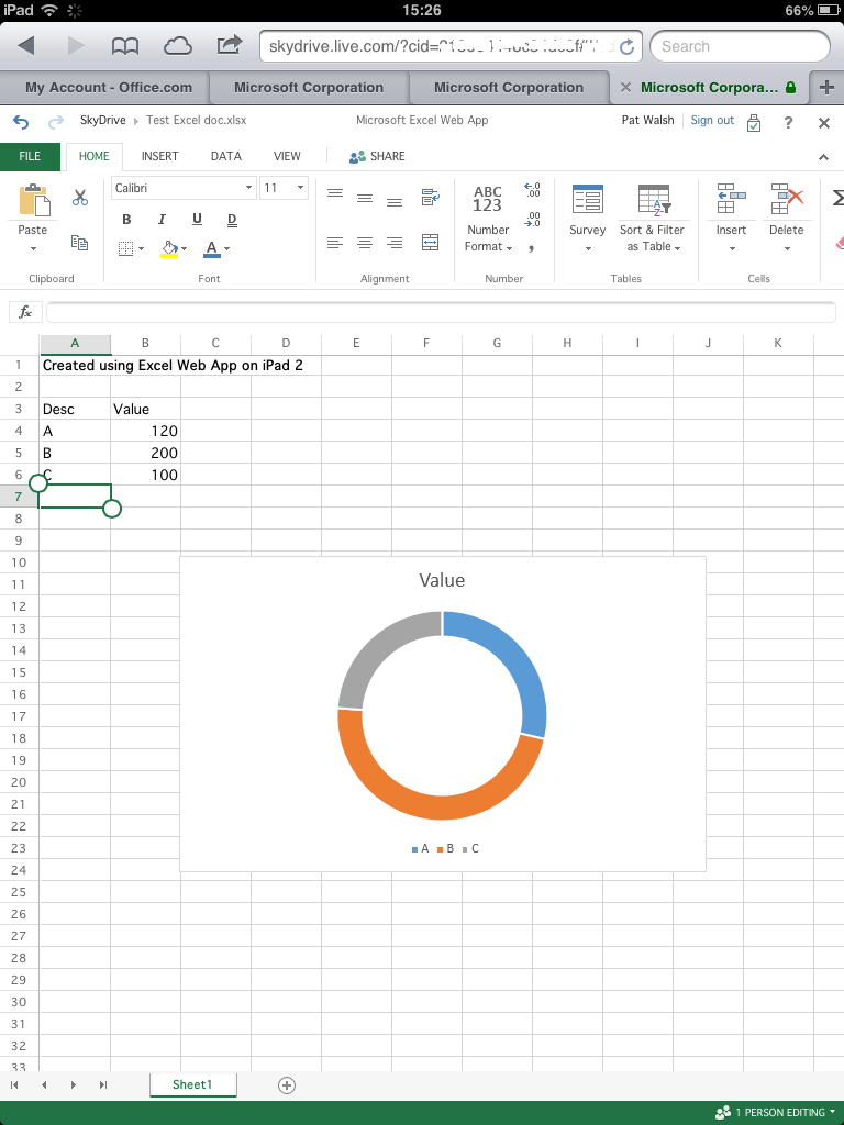 Excel Web App - editing 2